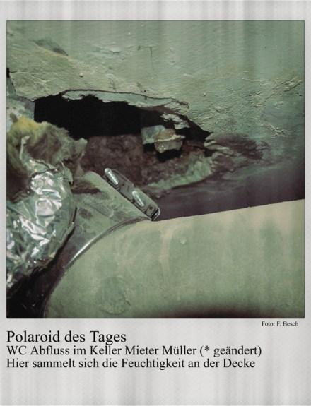 Polaroid des Tages: Der WC-Abfluss