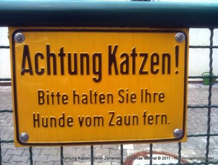 Achtung Katzen! Berlin-Zehlendorf