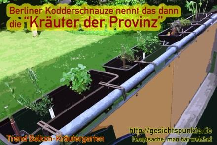 "Berliner Kodderschnauze ""Kräuter der Provinz"""