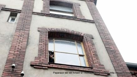 Paparazzi bei der Arbeit: Architekt fotografiert Giebelwände!