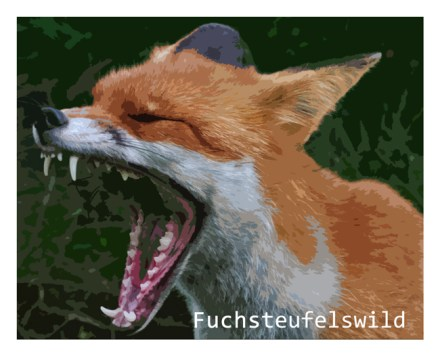 Fuchsteufelswild_Banner