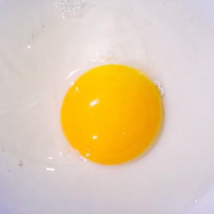 Das Gelbe vom Ei (Foto: Thomas Gotthal, © 2016)
