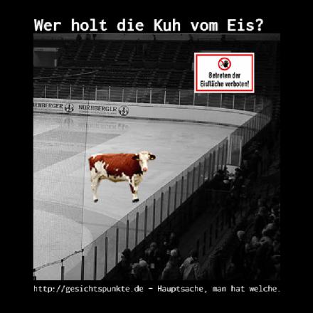 Wer holt die Kuh vom Eis?