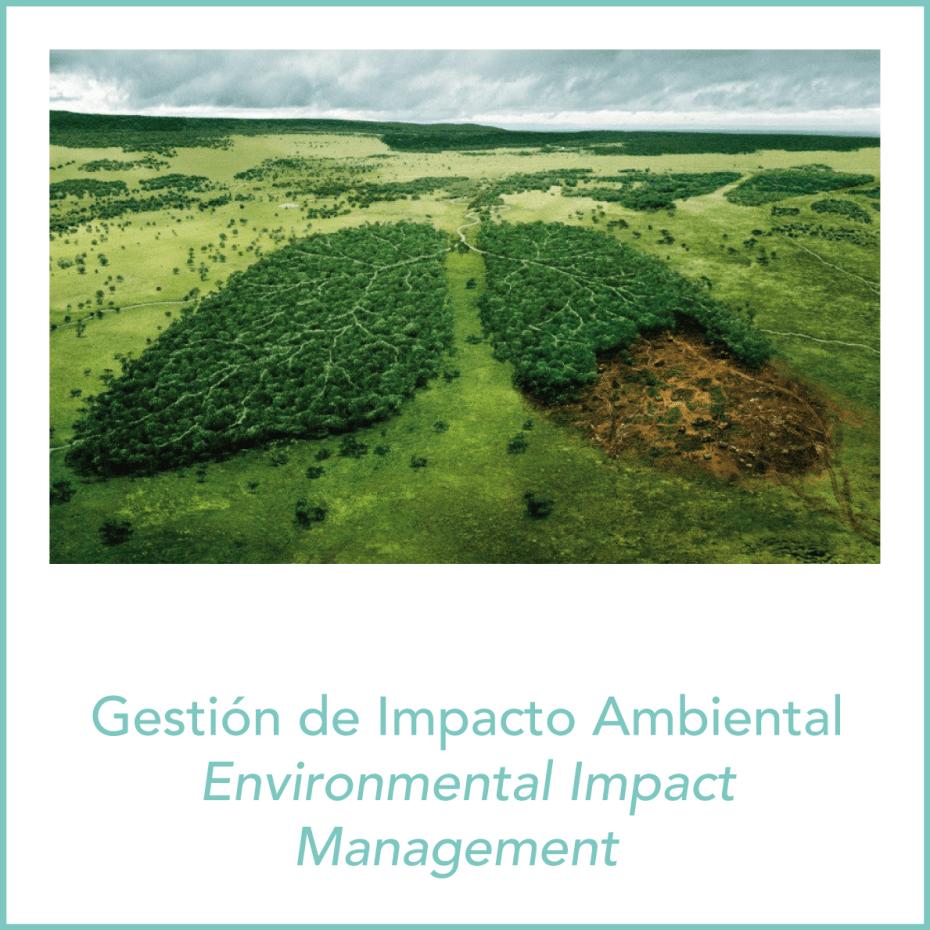 gestión impacto ambiental 1