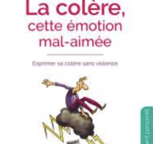 La colère comme émotion mal aimée : S et C Vidal-Graf