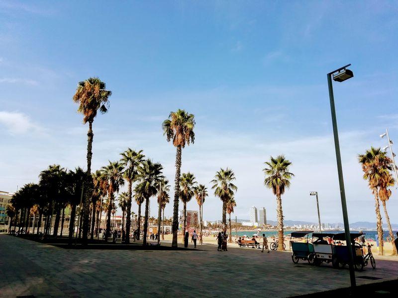 Che attività aprire a Barcellona