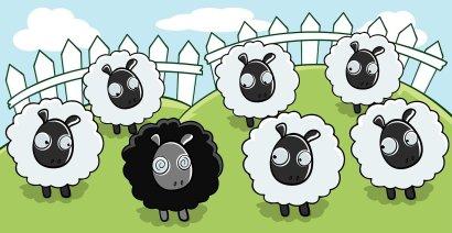equipo y oveja negra