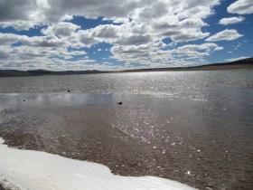 bofedales-y-laguna-de-salinas-3