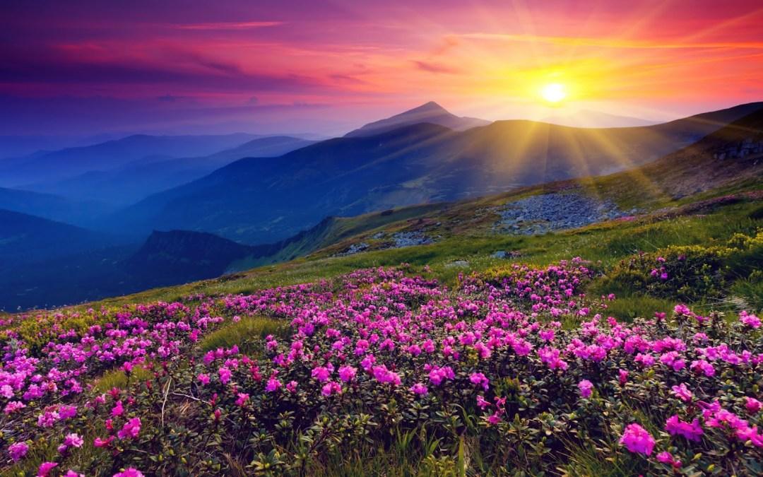 No necesitas creer en Dios para crear un mundo de paz y armonía