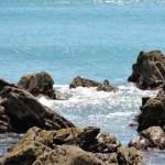 Área marina protegida - Mar Mediterráneo