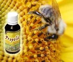 Propolis – Heilmittel aus der Natur