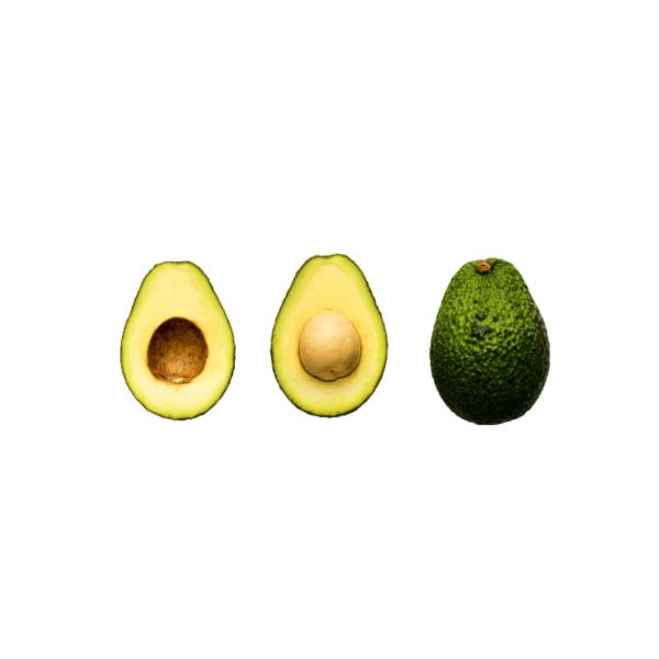 Avocadobaum 2