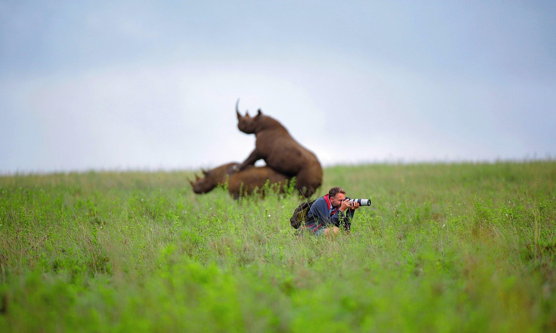 Hintergrundbilder Manner Landschaft Tiere Tiefenscharfe
