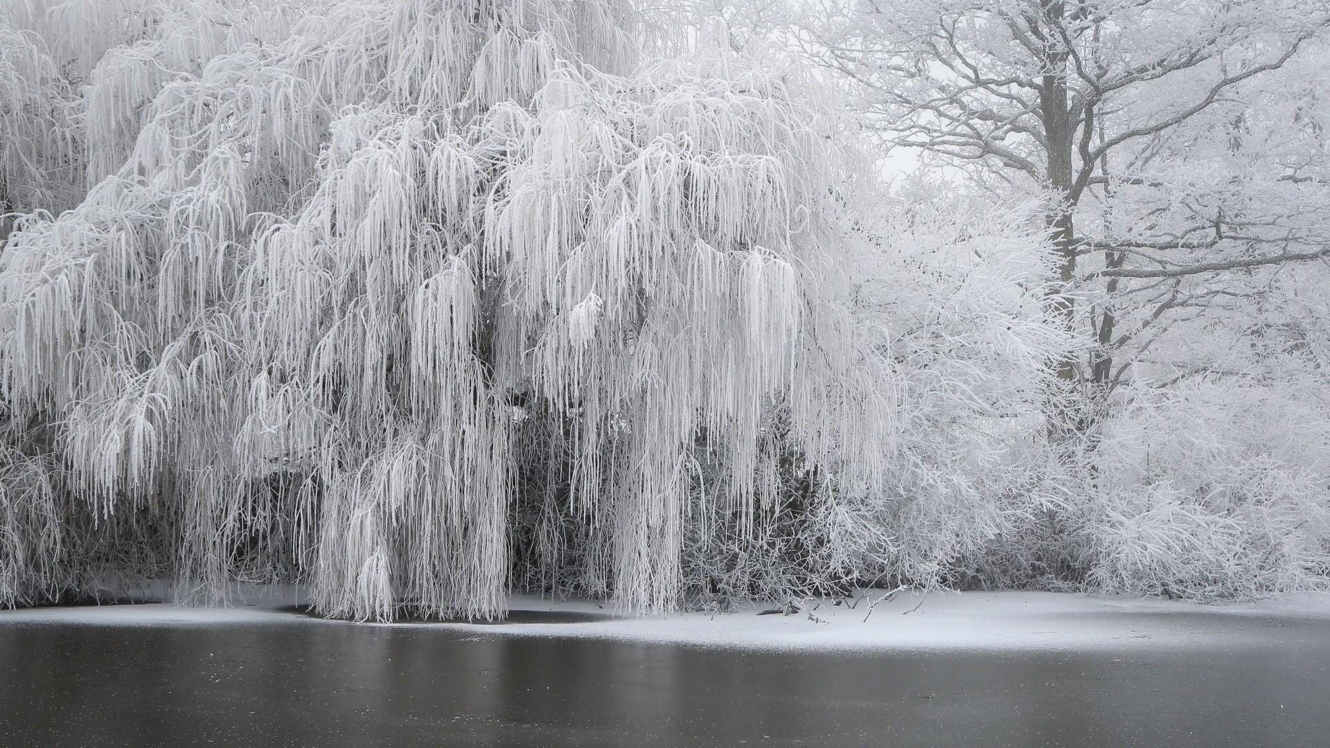 Wallpaper Hd Winter Snow Ice