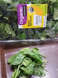 Spinach - Copy