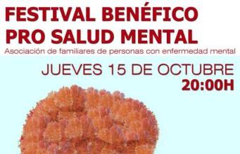 getafe_AFEM_FestivalBenéfico2015-341x220