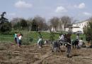 Getafe premiada en la FEMP por el Proyecto Alba, Acción Local por un Bosque Autóctono