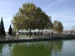 El Gobierno Municipal apuesta por la apertura diaria de los parques de La Alhóndiga, Castilla La Mancha y el Cerro de Los Ángeles
