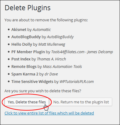 How To Automatically Update And Delete Plugins In WordPress