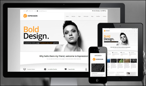 What is a WordPress Theme - An Overview
