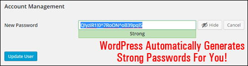 WordPress version 4.3 - Improved Passwords