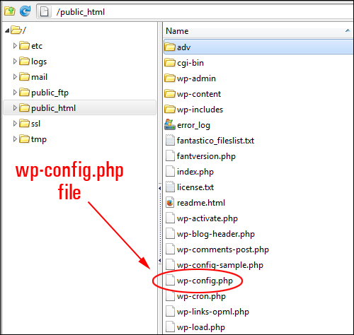 WP Config file