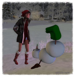 Snow Days 12.10.2015 3