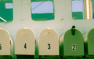 The Five Stages of Small Business: Which Phase Are You In and How to Evolve?