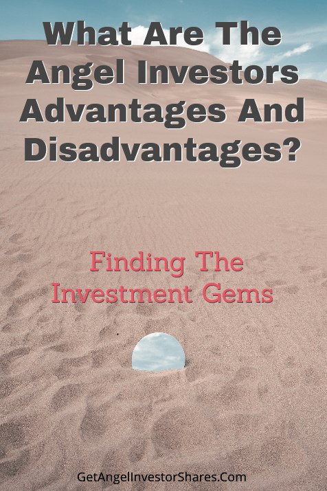 What Are The Angel Investors Advantages And Disadvantages?