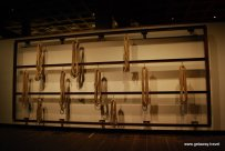 19-Mona Museum 11-1-2011 7-55-47 PM