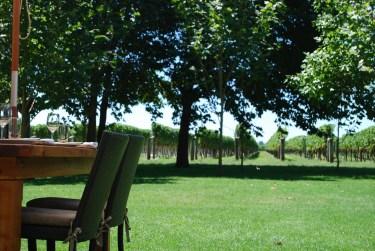 Te Awa winery Hawke's Bay 2-7-2011 3-46-19 PM