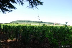 03-Burgundy France Wine Tour 7-27-2013 10-23-39 AM