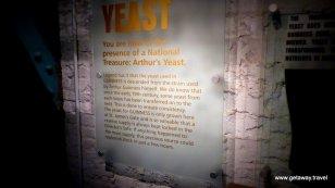 Yeast!