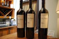 08-Te Awa winery Hawke's Bay 2-7-2011 3-17-20 PM
