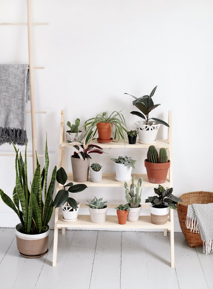 Awesome wooden plant stands indoor #diyplantstandideas #plantstandideas #plantstand