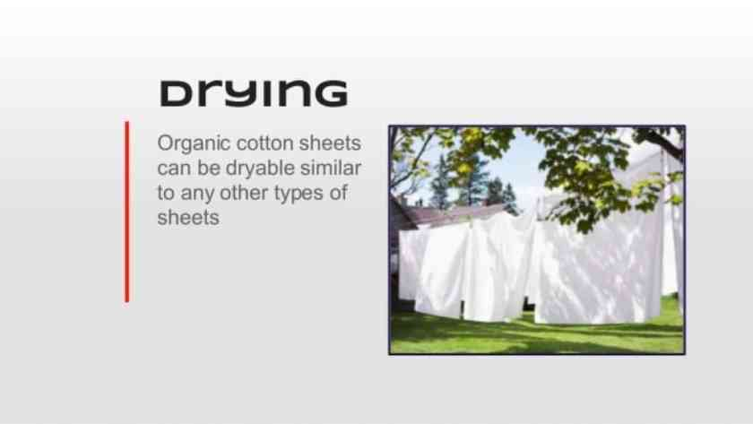 organic cotton sheet is driable