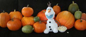 olaf, pumpkins, pumpkin gutter, its the great pumpkin charlie brown