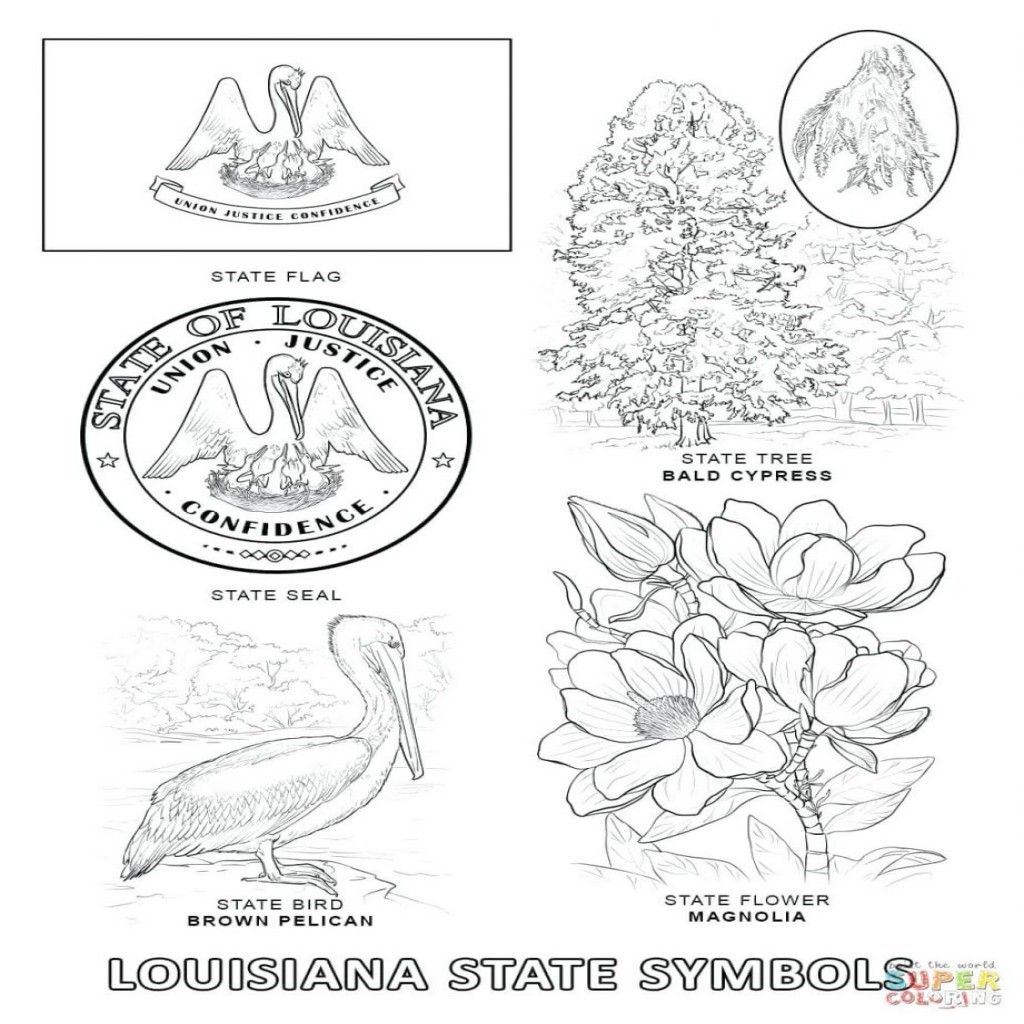California State Symbols Coloring Pages At Getcolorings