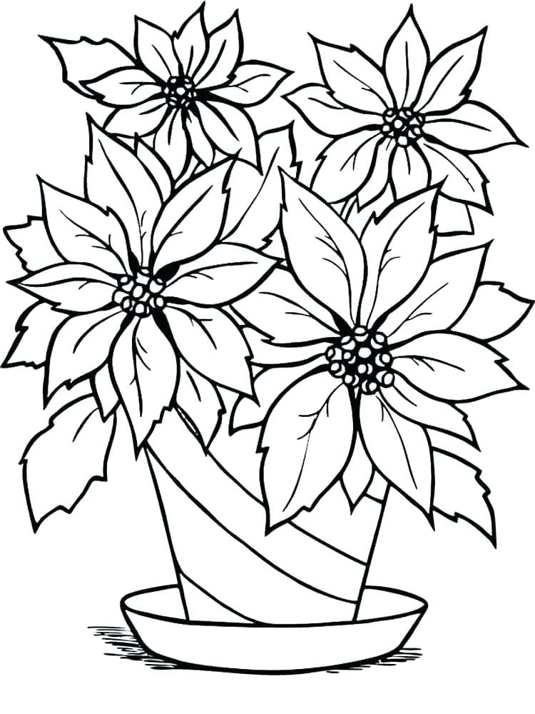 christmas poinsettia coloring page at getcolorings