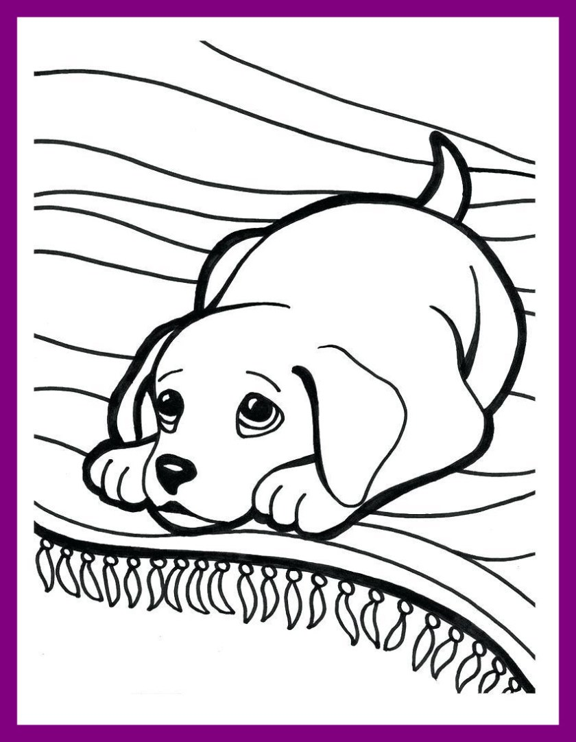 coloring pages of golden retriever puppies at getcolorings