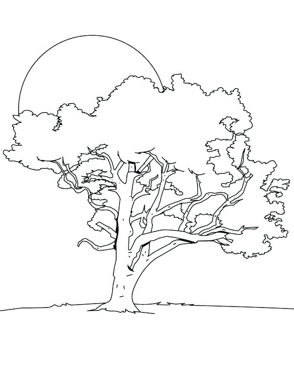 day and night coloring page at getcolorings  free
