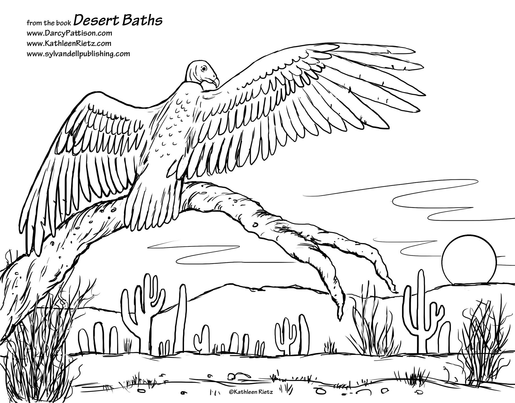 Desert Habitat Coloring Pages At Getcolorings