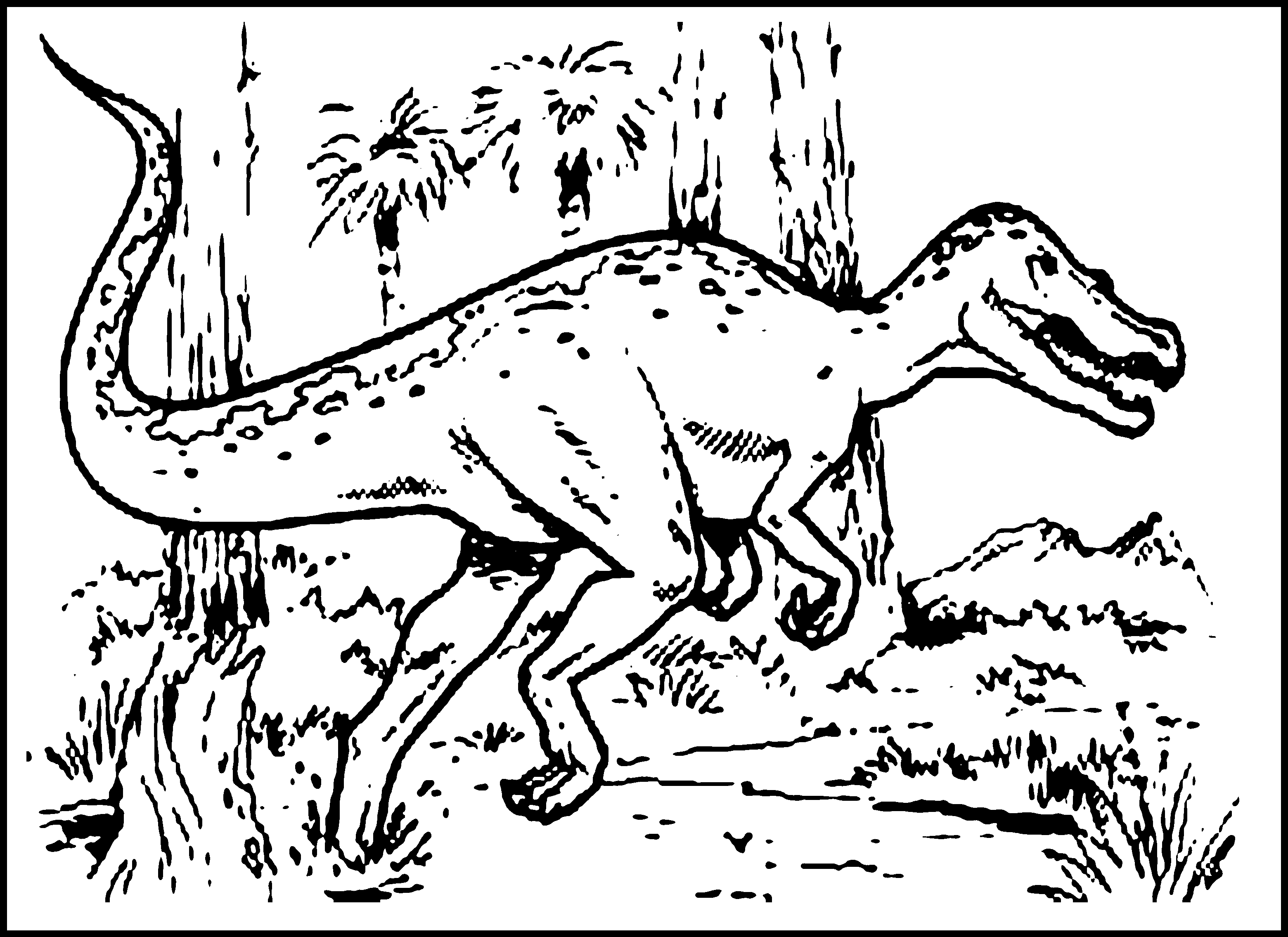 Dinosaur Coloring Pages For Kids At Getcolorings