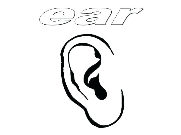 ear coloring page # 37