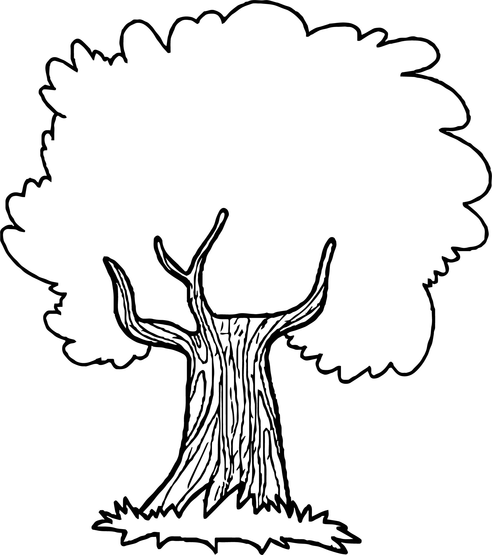 Fig Tree Coloring Page At Getcolorings