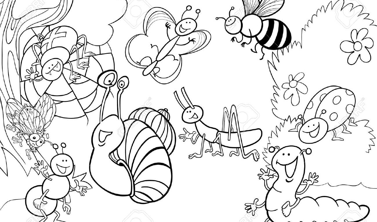 Free Printable Insect Coloring Pages At Getcolorings