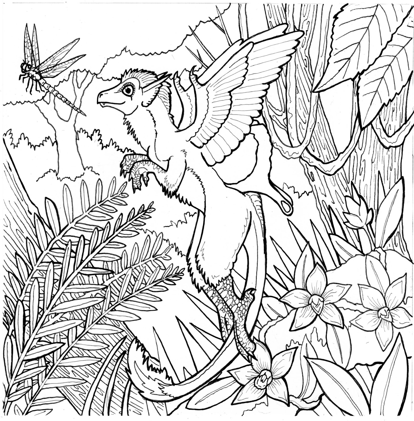 Free Rainforest Coloring Pages At Getcolorings