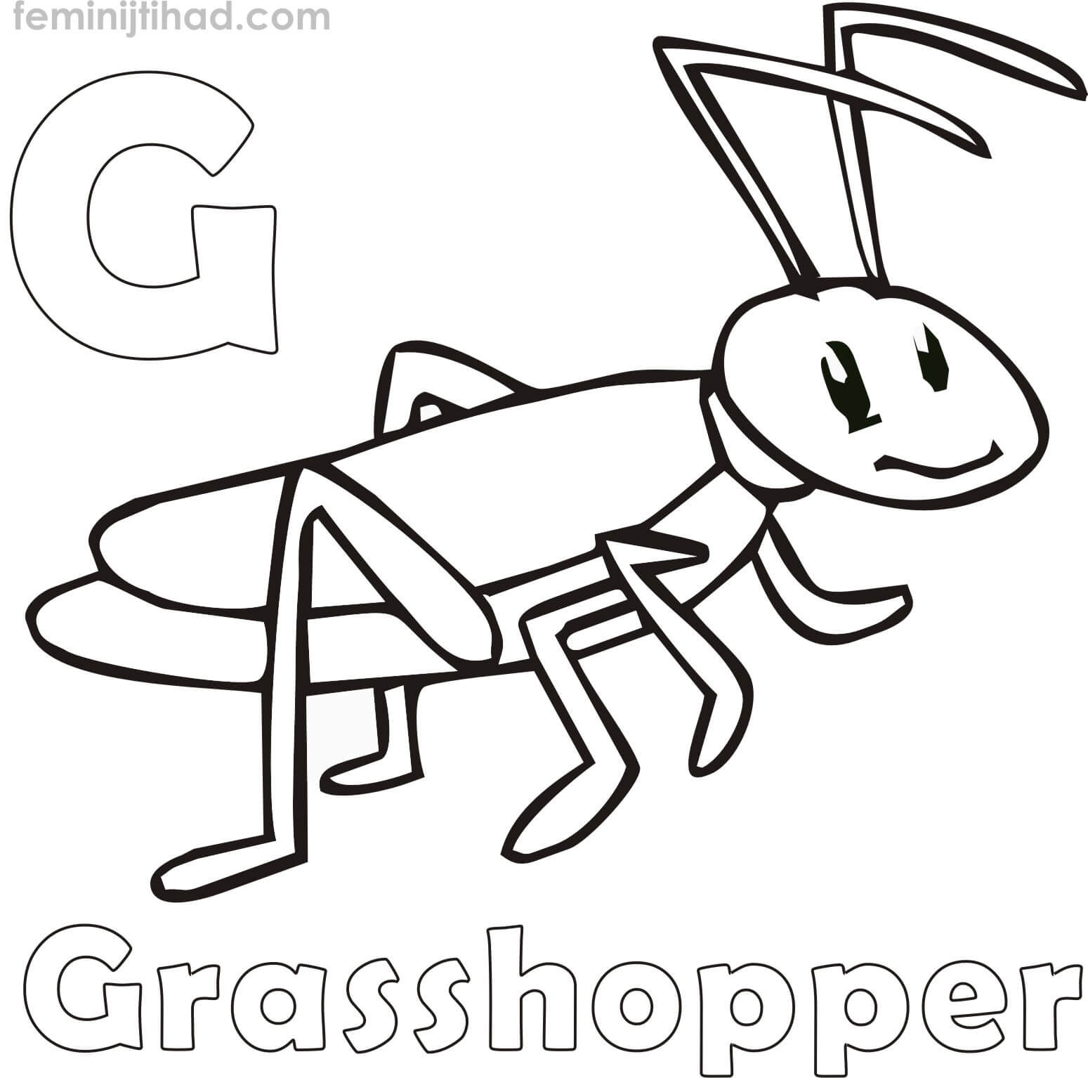 Grasshopper Coloring Pages For Kids At Getcolorings