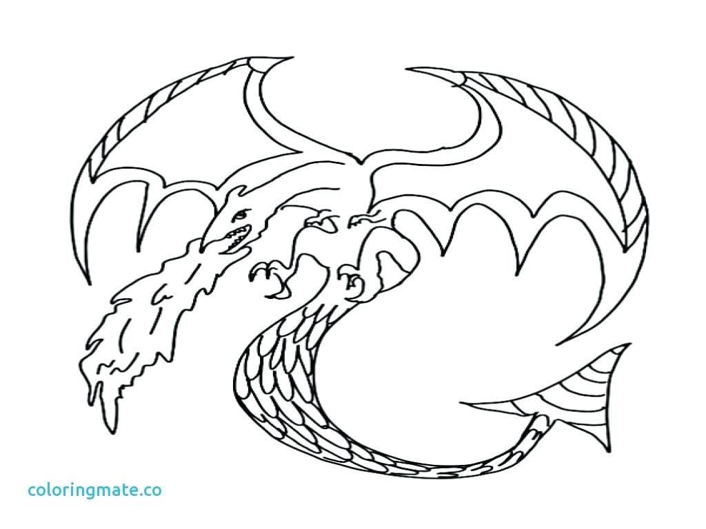 Harry Potter Dragon Coloring Pages At Getcolorings
