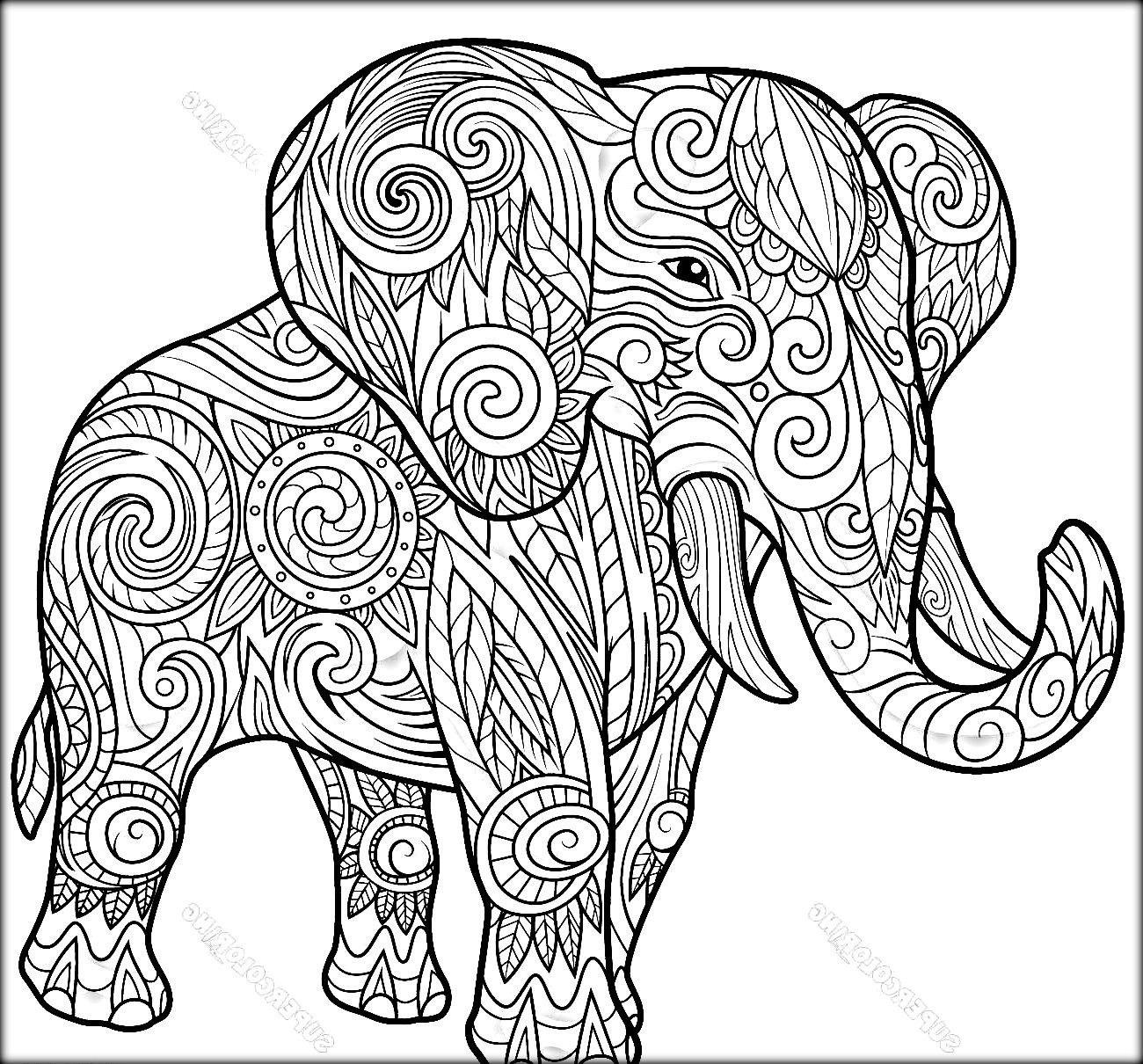 Indian Elephant Coloring Pages At Getcolorings